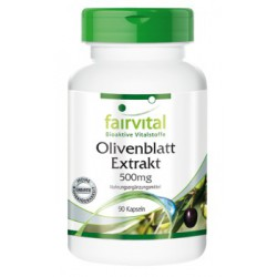 Olivenblatt Extrakt 500 mg, 90 Kapseln