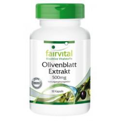 Olivenblatt Extrakt, 90 Kapseln