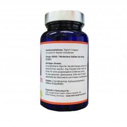 L-Carnitin 500 mg, 60 Kapseln
